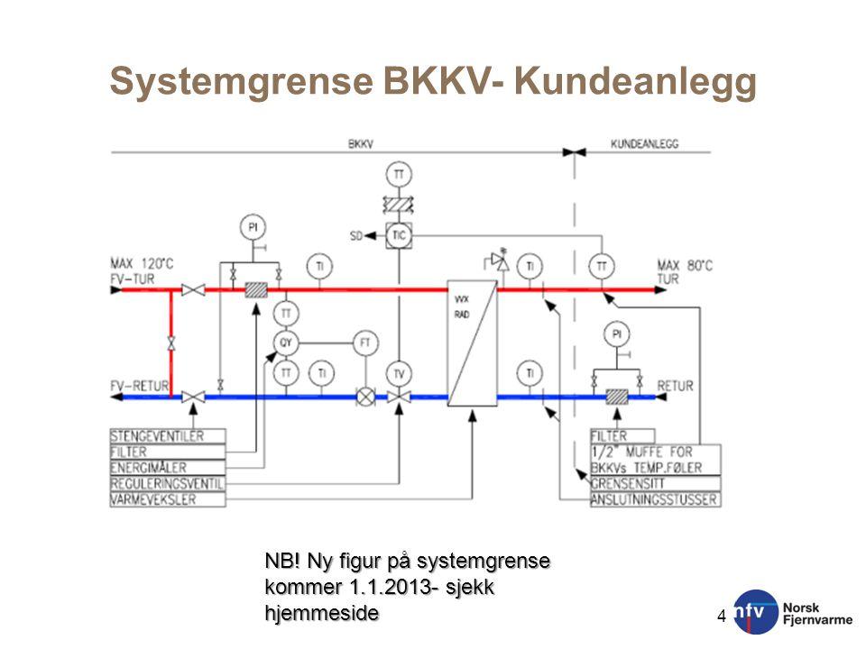 Systemgrense BKKV- Kundeanlegg