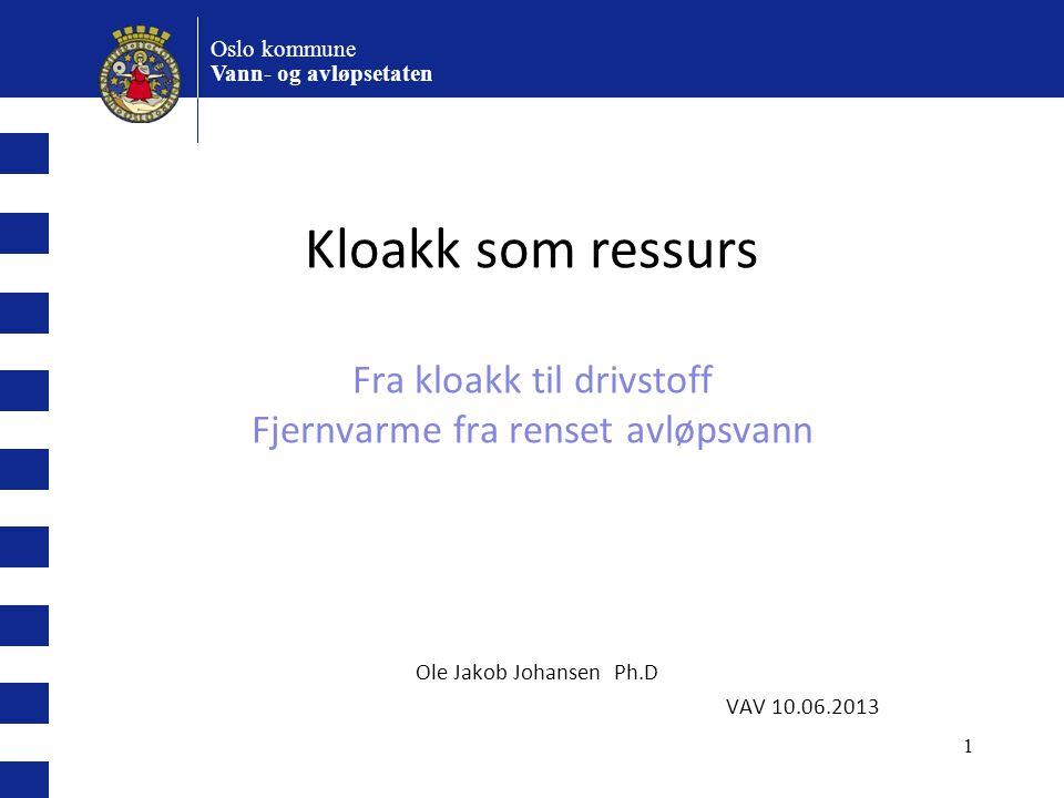 Ole Jakob Johansen Ph.D VAV 10.06.2013