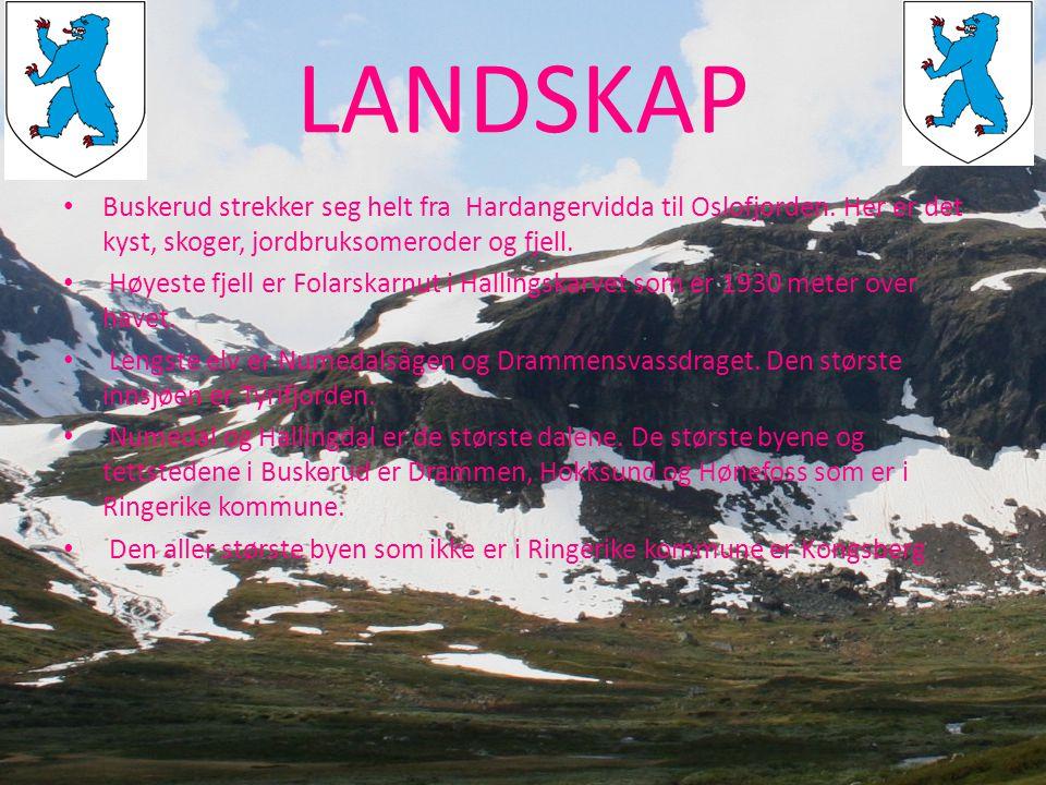 LANDSKAP Buskerud strekker seg helt fra Hardangervidda til Oslofjorden. Her er det kyst, skoger, jordbruksomeroder og fjell.