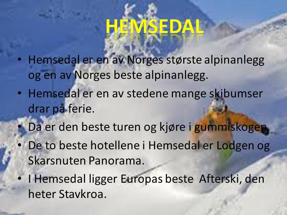 HEMSEDAL Hemsedal er en av Norges største alpinanlegg og en av Norges beste alpinanlegg. Hemsedal er en av stedene mange skibumser drar på ferie.