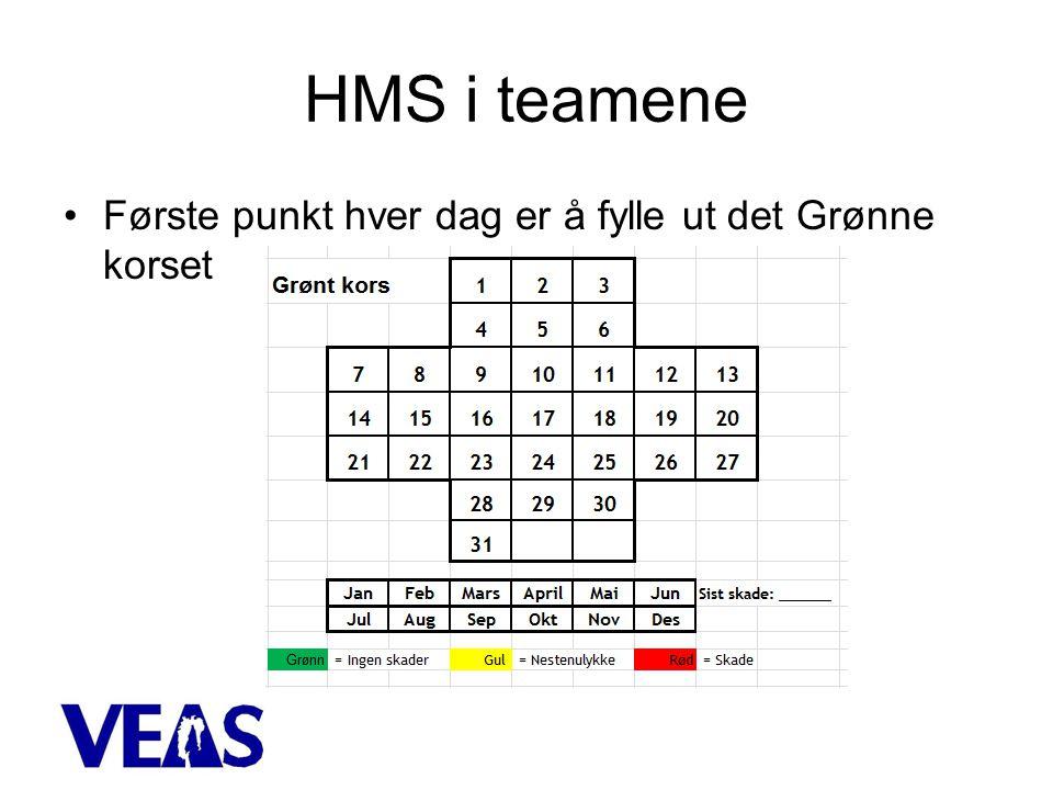 HMS i teamene Første punkt hver dag er å fylle ut det Grønne korset