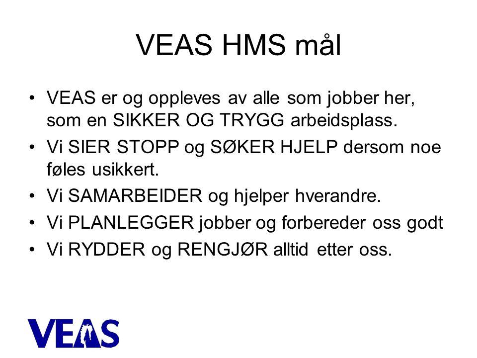 VEAS HMS mål VEAS er og oppleves av alle som jobber her, som en SIKKER OG TRYGG arbeidsplass.