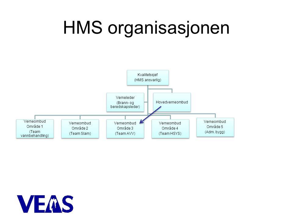 HMS organisasjonen Kvalitetssjef (HMS ansvarlig) Verneombud Område 1