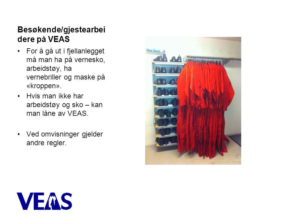 Besøkende/gjestearbeidere på VEAS