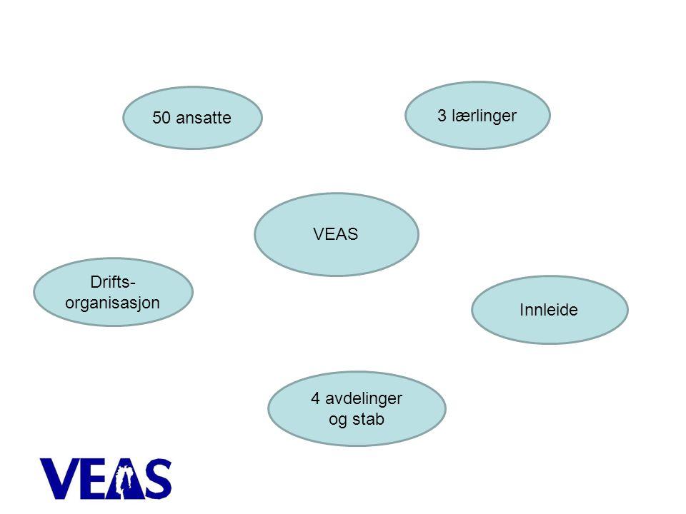 3 lærlinger 50 ansatte VEAS Drifts-organisasjon Innleide
