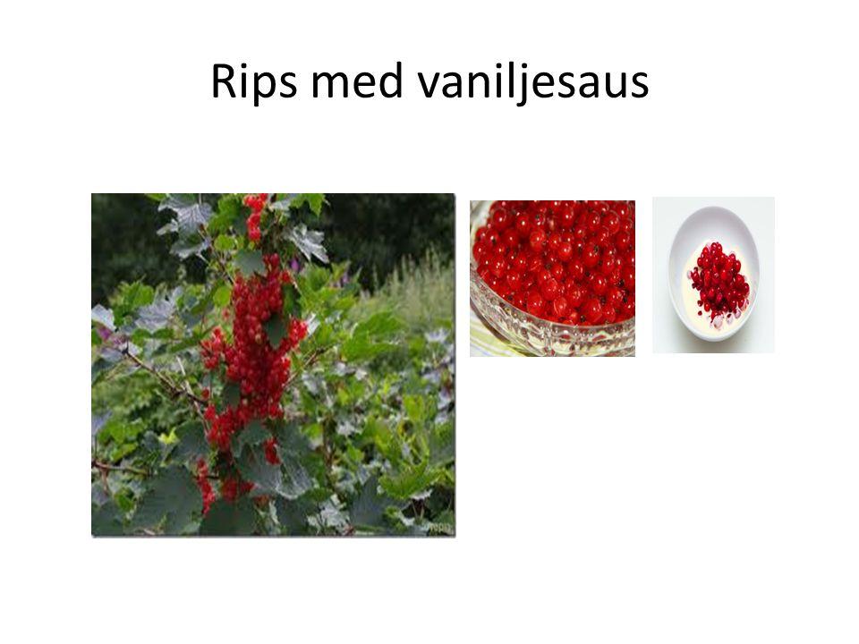 Rips med vaniljesaus