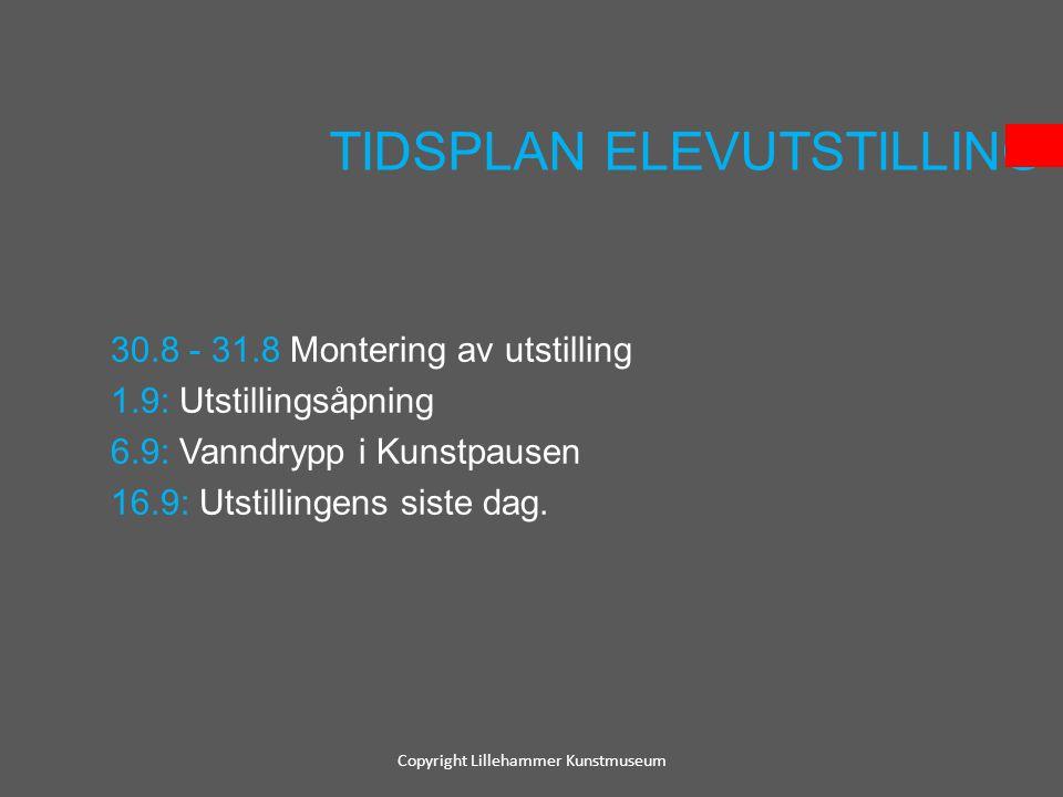 TIDSPLAN ELEVUTSTILLING
