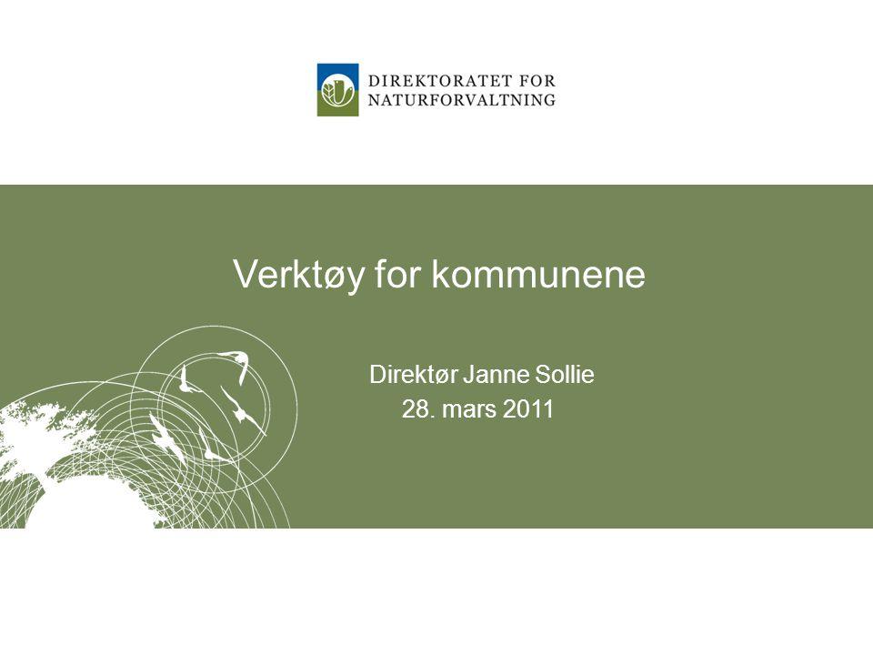 Verktøy for kommunene Direktør Janne Sollie 28. mars 2011