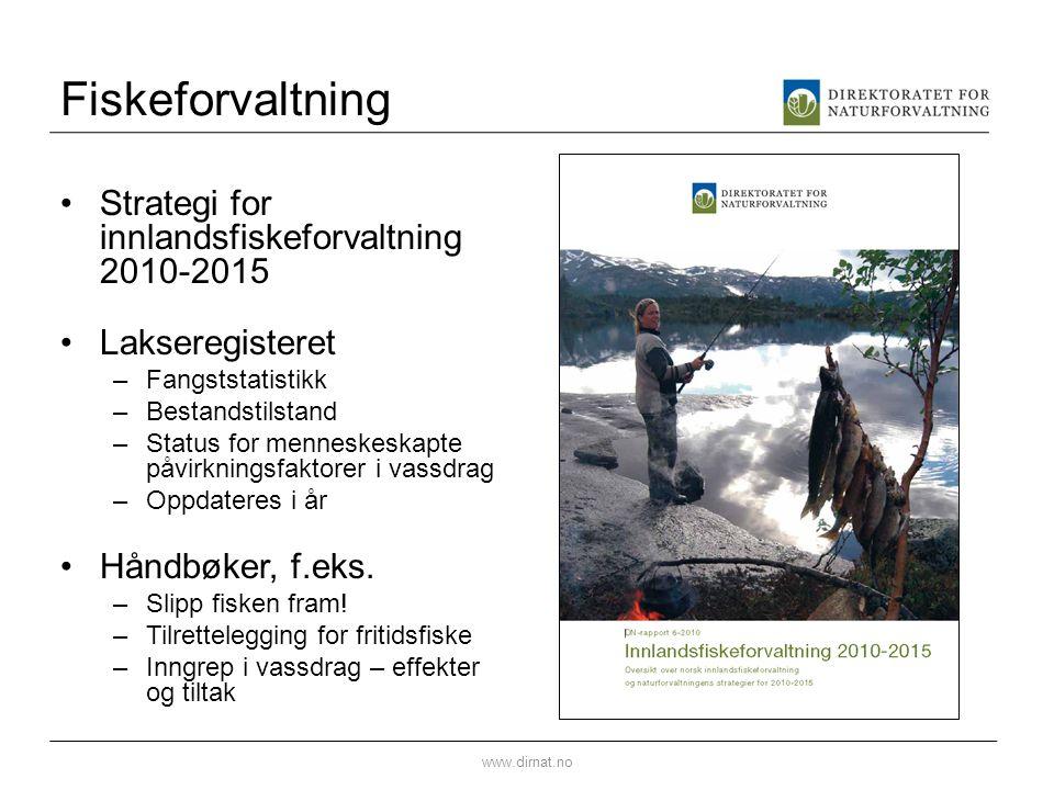 Fiskeforvaltning Strategi for innlandsfiskeforvaltning 2010-2015