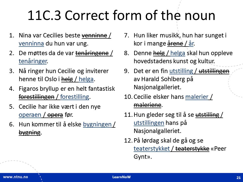 11C.3 Correct form of the noun