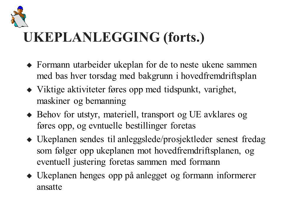UKEPLANLEGGING (forts.)