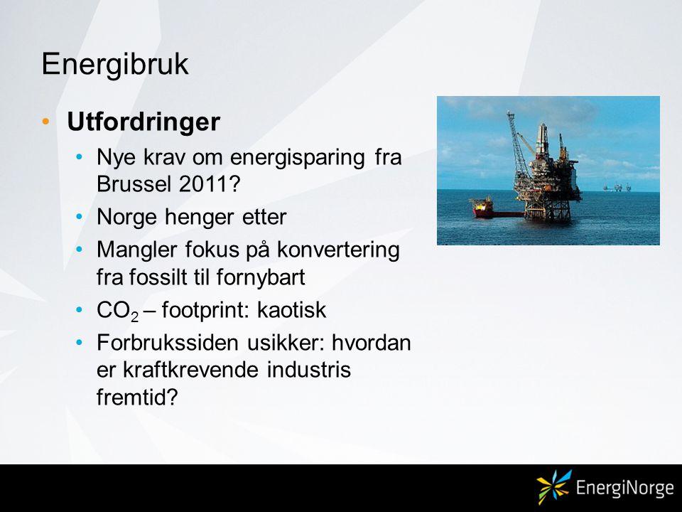 Energibruk Utfordringer Nye krav om energisparing fra Brussel 2011