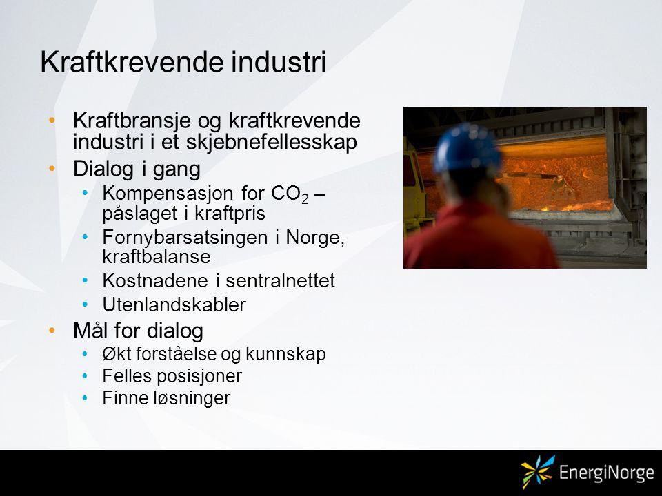 Kraftkrevende industri