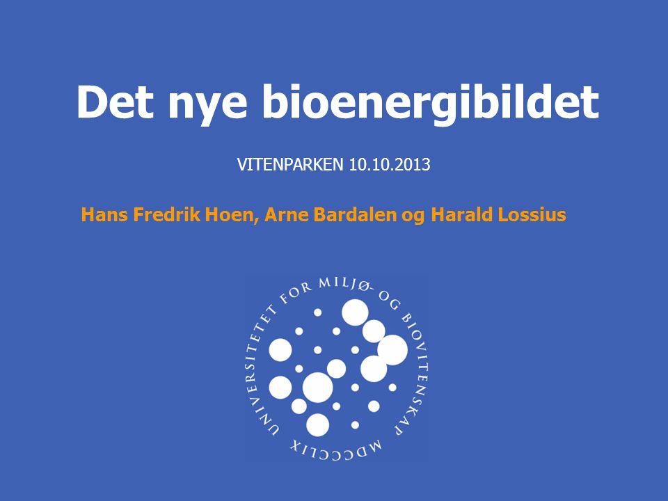 Det nye bioenergibildet VITENPARKEN 10.10.2013