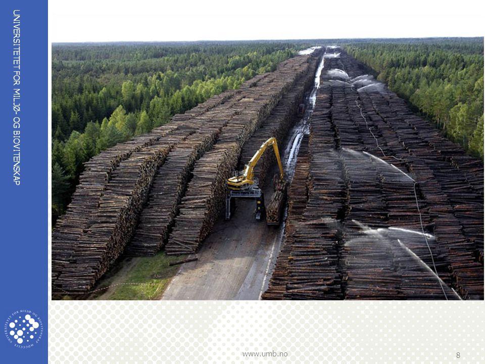 Byholma, en nedlagt militær flystripe, blei brukt som lagringsplass for 1 mill. M3 tømmer ved opprydningen etter vindfellingen fra Gudrun (2500*60*7m)