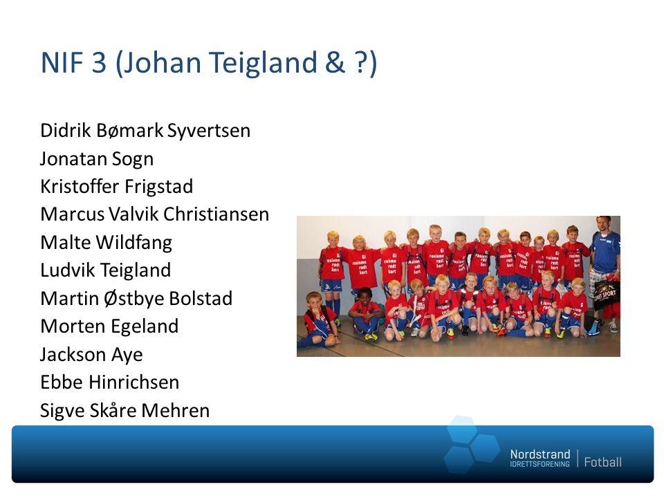 NIF 3 (Johan Teigland & )