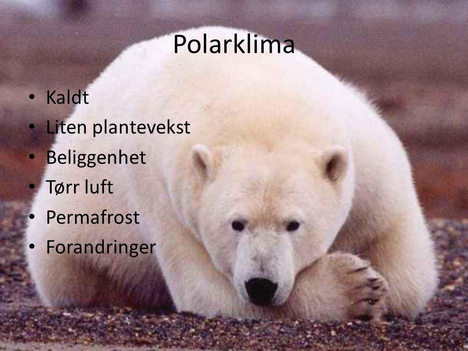 Polarklima Kaldt Liten plantevekst Beliggenhet Tørr luft Permafrost