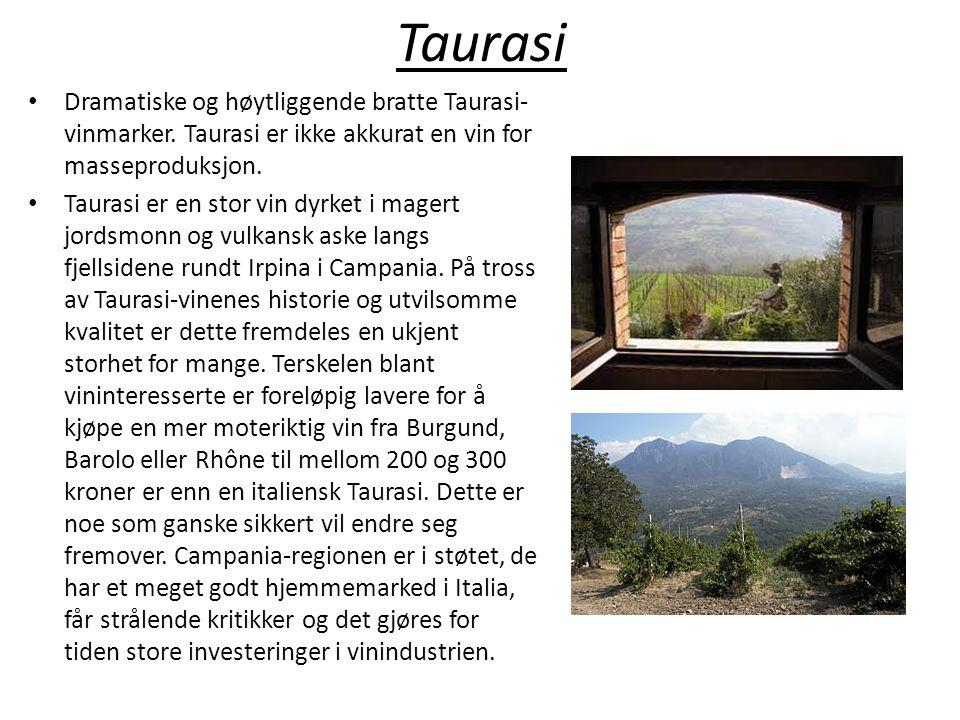 Taurasi Dramatiske og høytliggende bratte Taurasi-vinmarker. Taurasi er ikke akkurat en vin for masseproduksjon.