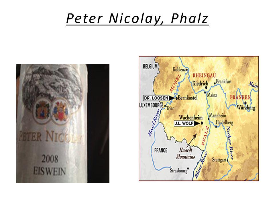 Peter Nicolay, Phalz