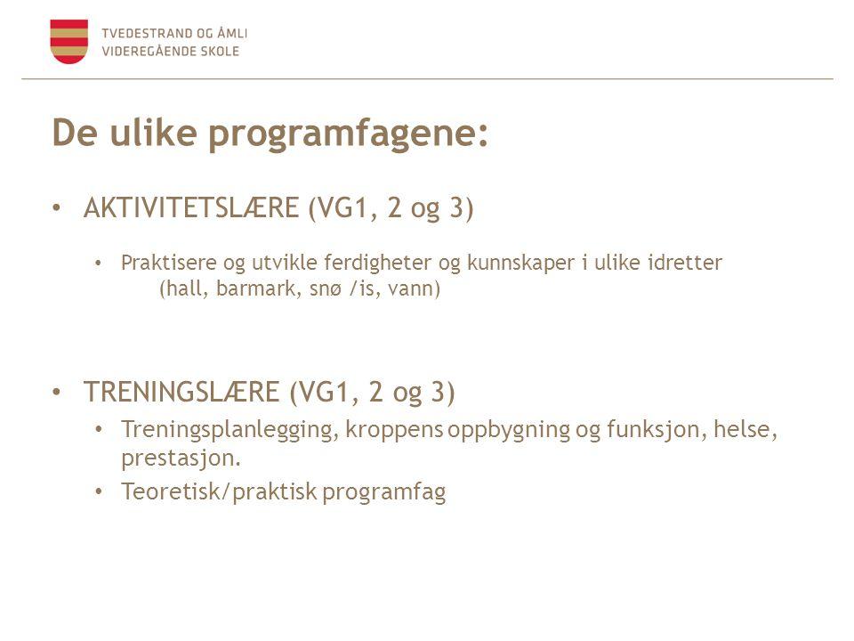 De ulike programfagene:
