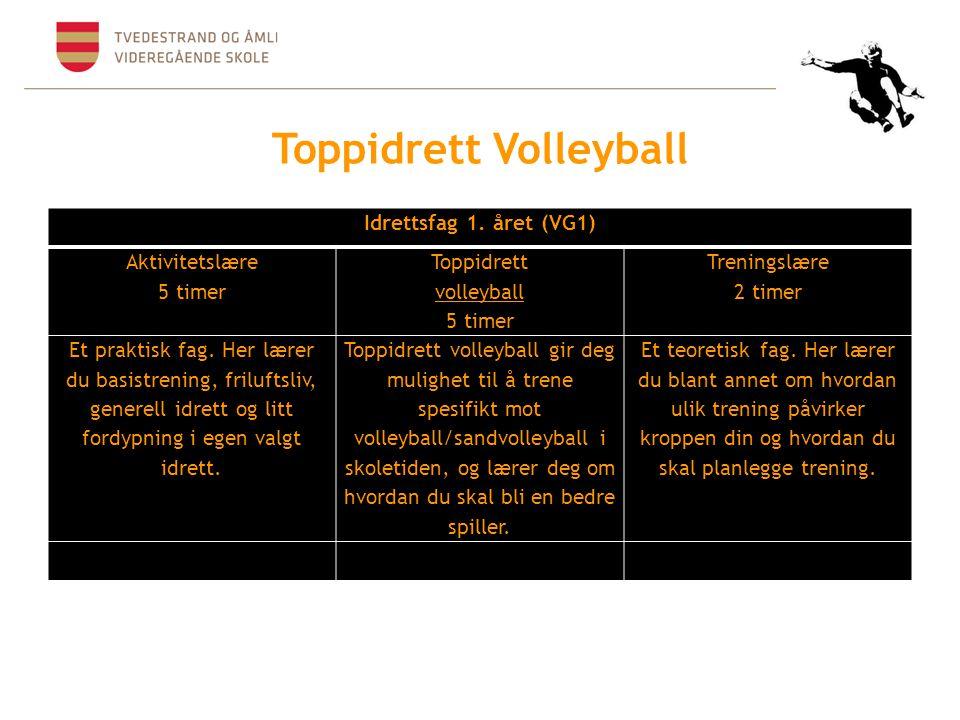 Toppidrett Volleyball