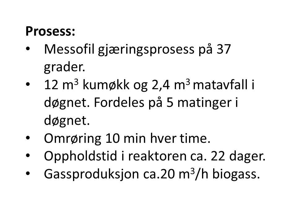 Prosess: Messofil gjæringsprosess på 37 grader. 12 m3 kumøkk og 2,4 m3 matavfall i døgnet. Fordeles på 5 matinger i døgnet.