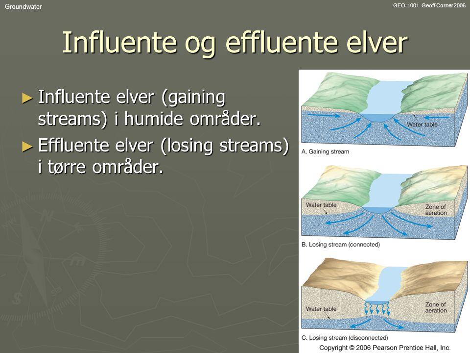 Influente og effluente elver