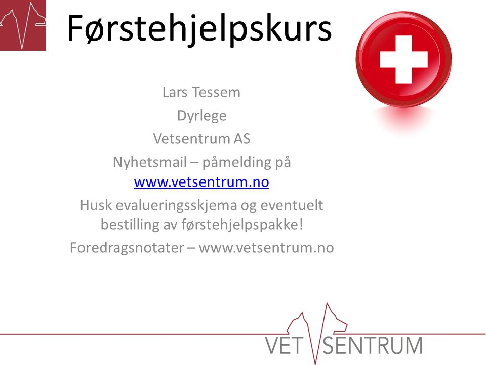 Førstehjelpskurs Lars Tessem Dyrlege Vetsentrum AS