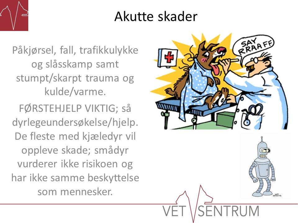 Akutte skader Påkjørsel, fall, trafikkulykke og slåsskamp samt stumpt/skarpt trauma og kulde/varme.