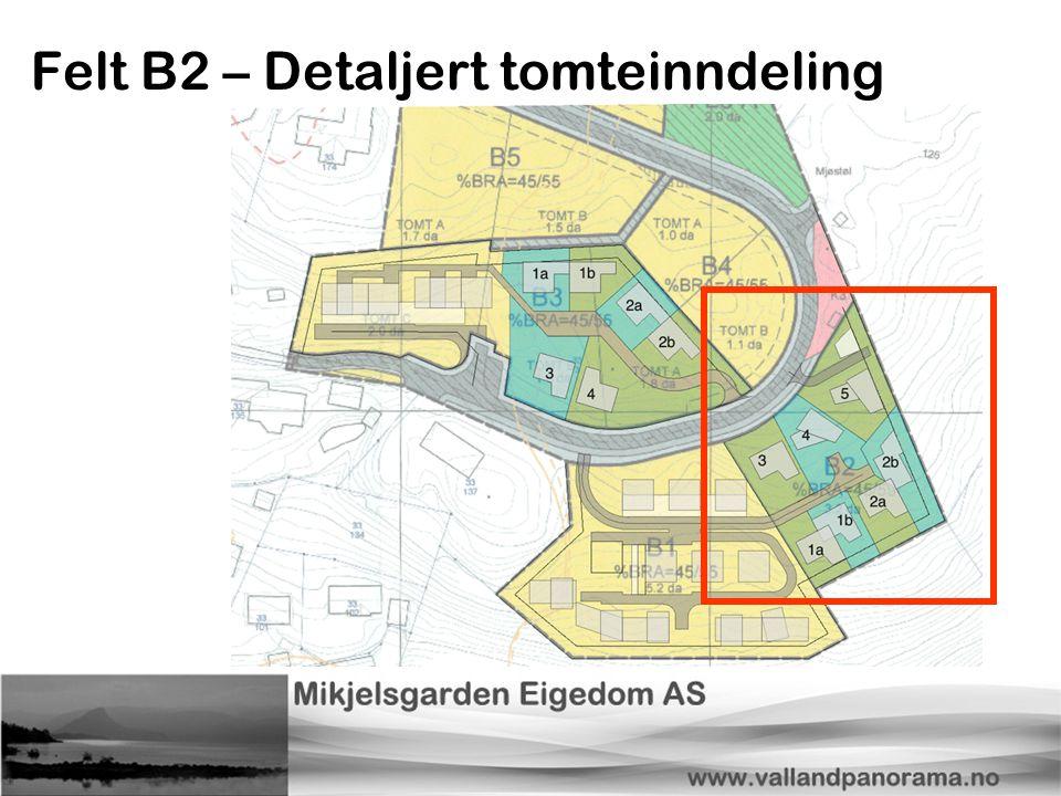 Felt B2 – Detaljert tomteinndeling