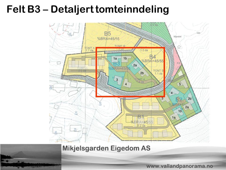 Felt B3 – Detaljert tomteinndeling