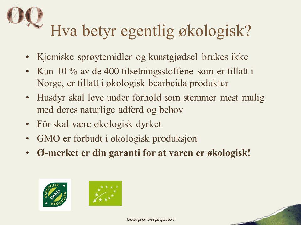 Hva betyr egentlig økologisk