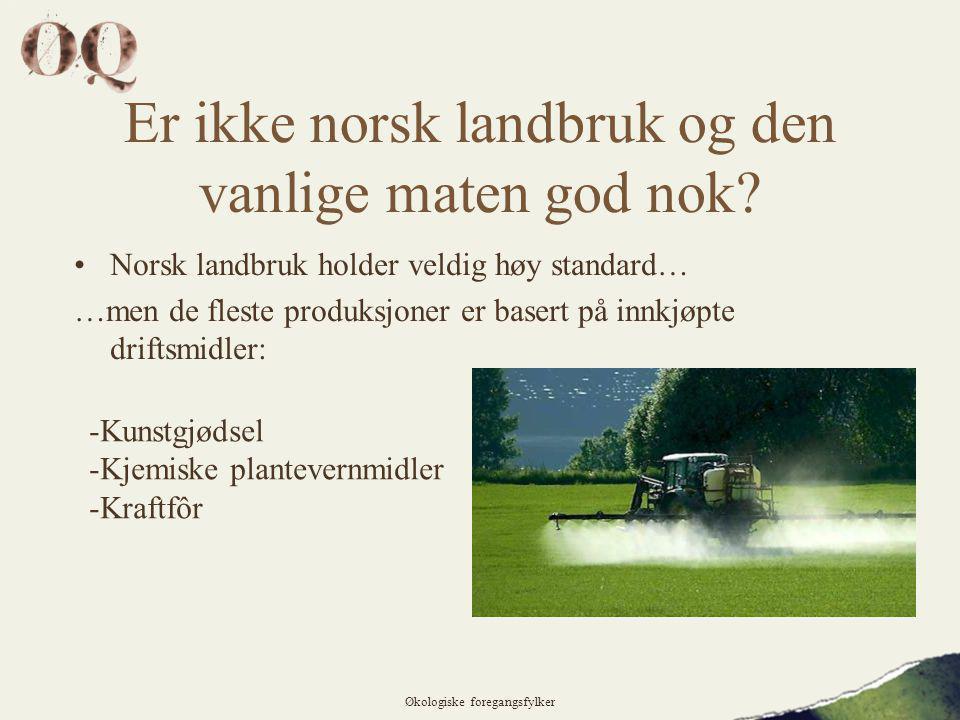 Er ikke norsk landbruk og den vanlige maten god nok