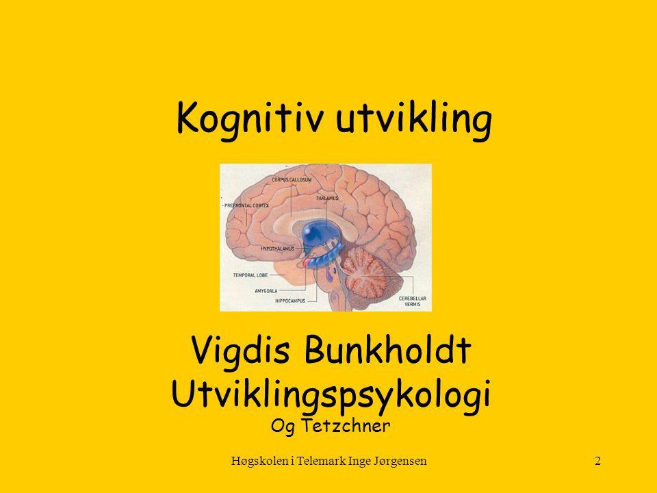 Vigdis Bunkholdt Utviklingspsykologi Og Tetzchner
