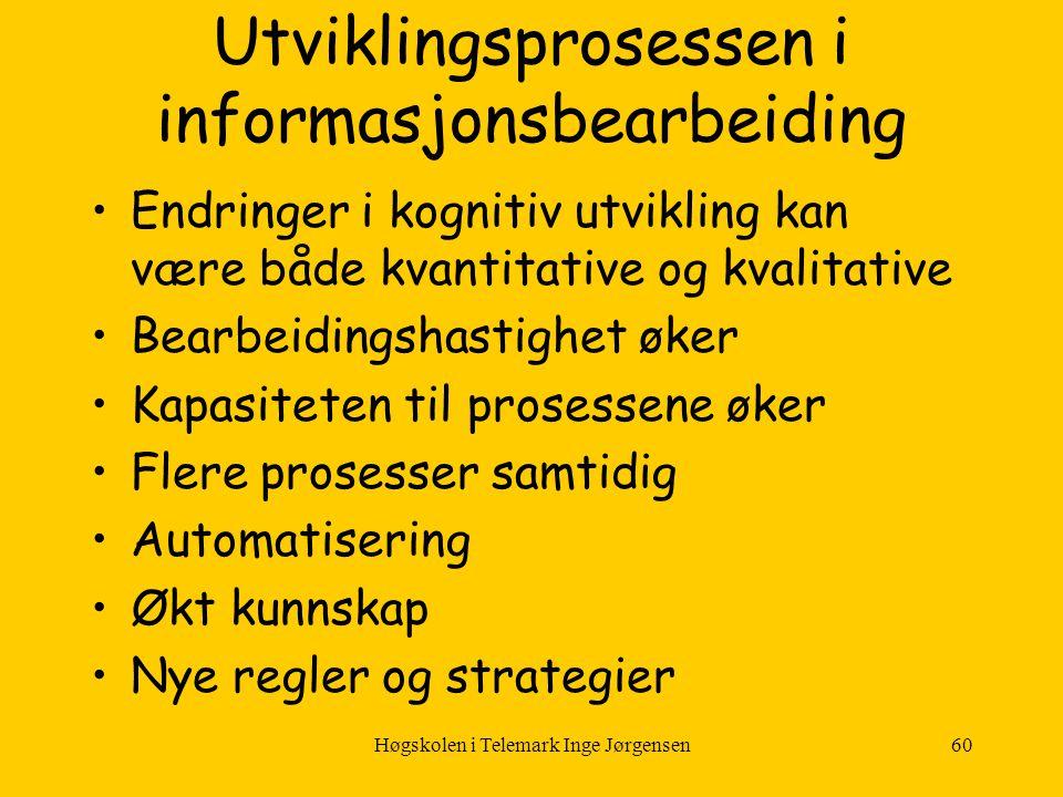 Utviklingsprosessen i informasjonsbearbeiding