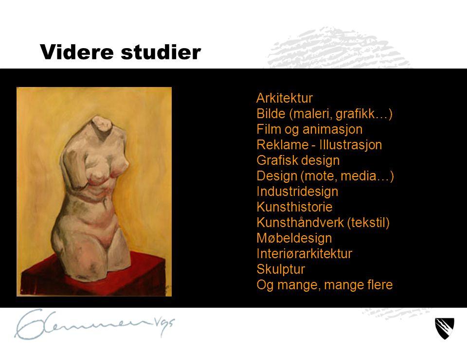 Videre studier Arkitektur Bilde (maleri, grafikk…) Film og animasjon