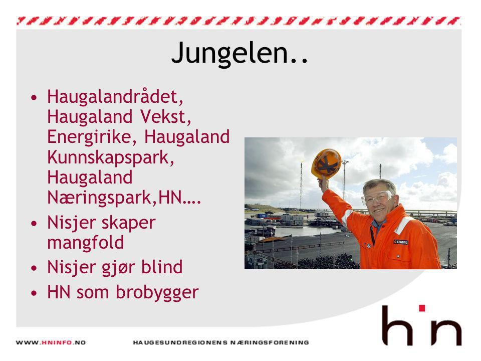 Jungelen.. Haugalandrådet, Haugaland Vekst, Energirike, Haugaland Kunnskapspark, Haugaland Næringspark,HN….