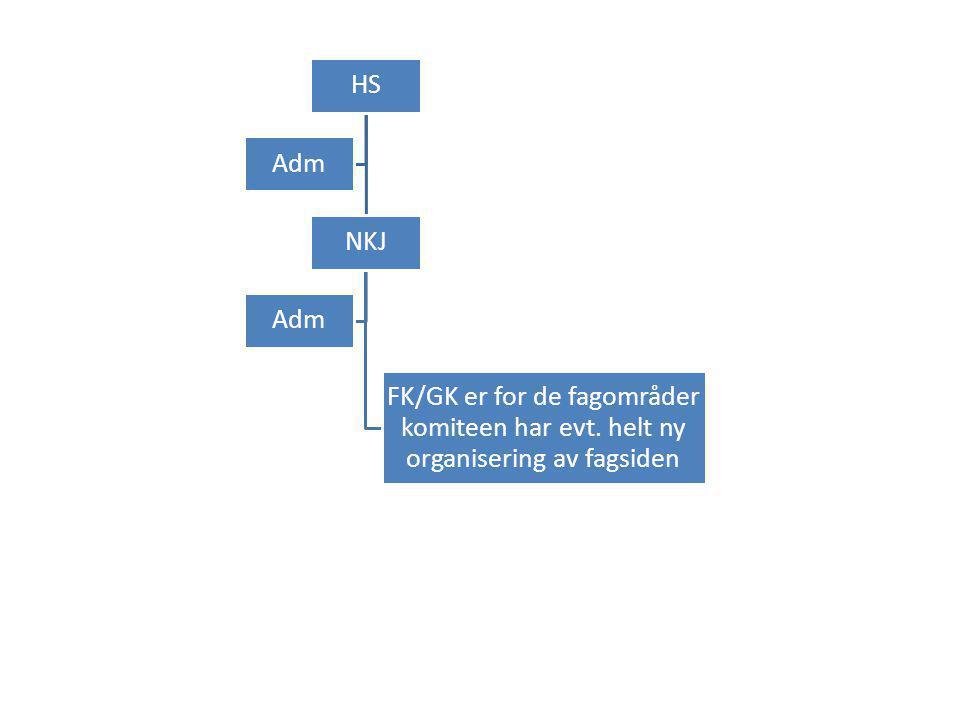 HS NKJ FK/GK er for de fagområder komiteen har evt. helt ny organisering av fagsiden Adm