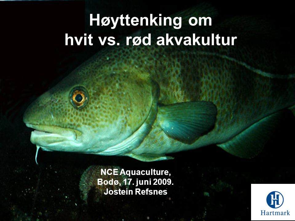 Høyttenking om hvit vs. rød akvakultur