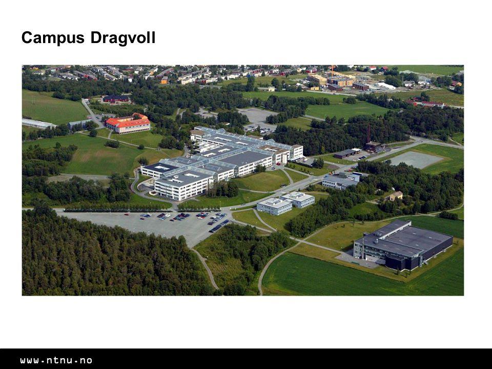 Campus Dragvoll NTNUs andre hovedcampus. Her holder blant annet de samfunnsvitenskaplige og humanistiske programmene til.