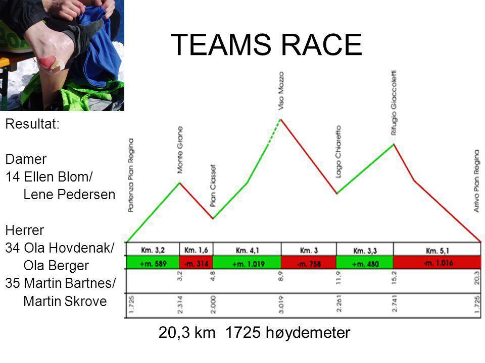 TEAMS RACE 20,3 km 1725 høydemeter Resultat: Damer 14 Ellen Blom/