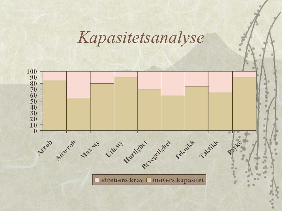 Kapasitetsanalyse