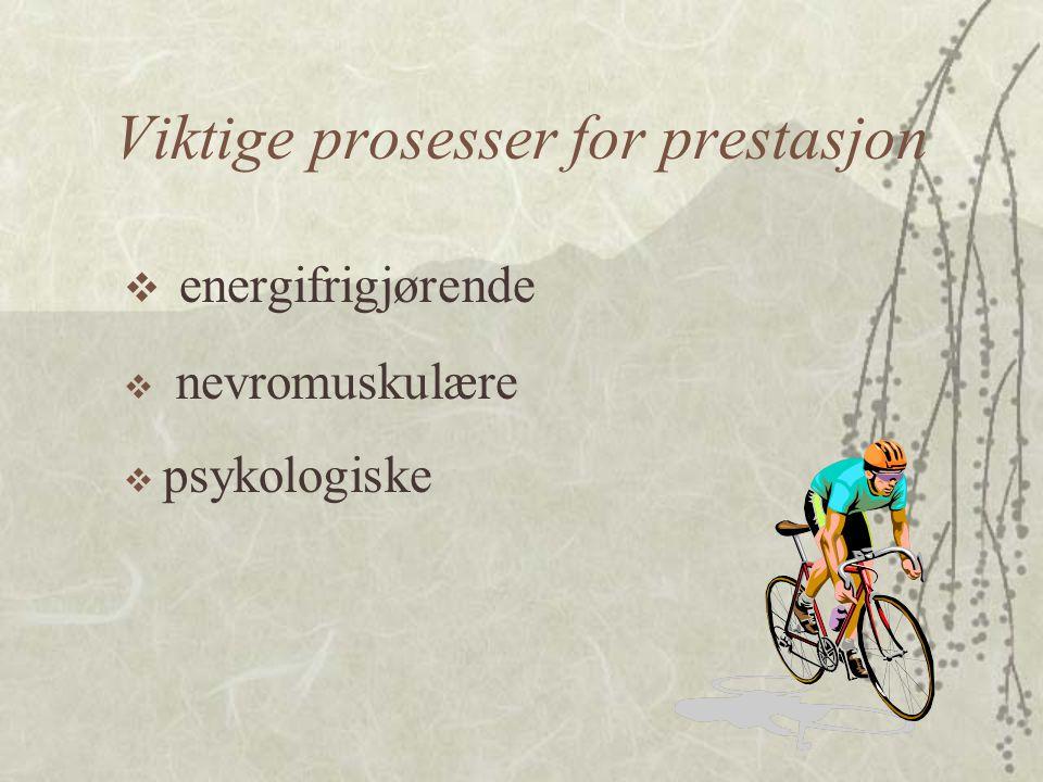 Viktige prosesser for prestasjon