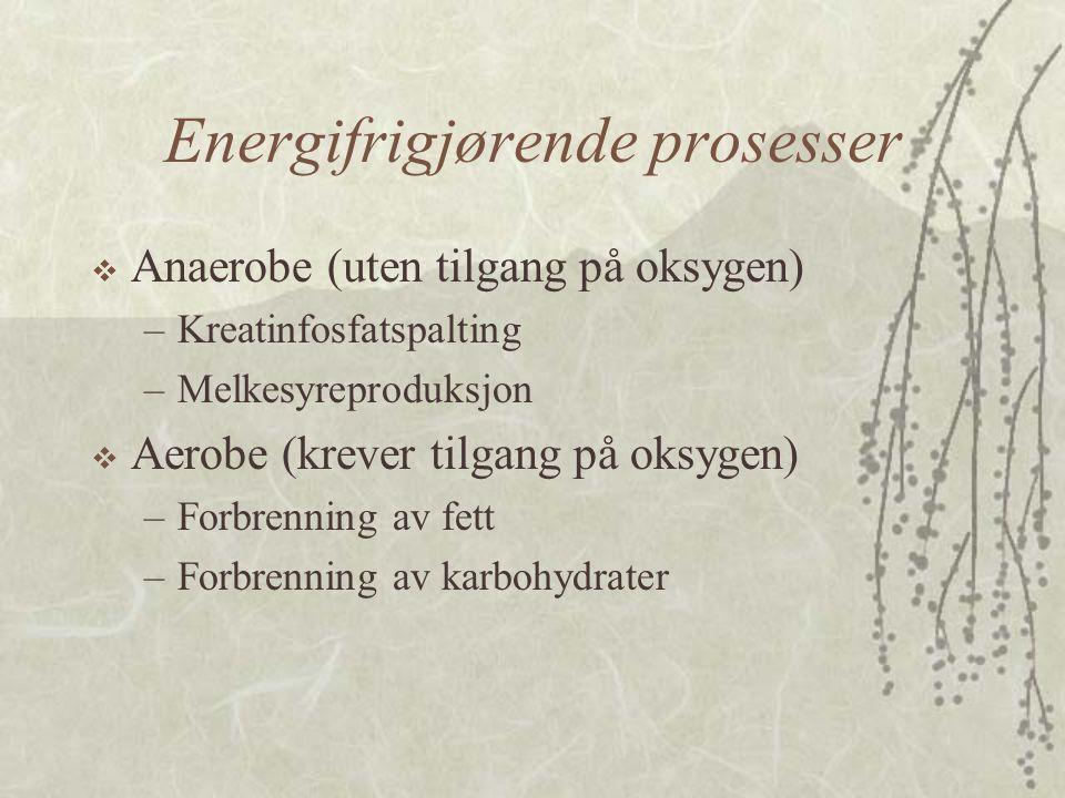Energifrigjørende prosesser
