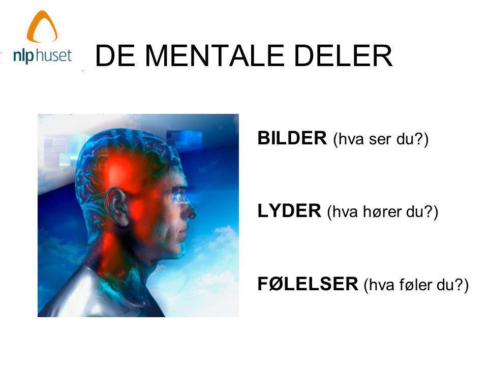 DE MENTALE DELER BILDER (hva ser du ) LYDER (hva hører du )