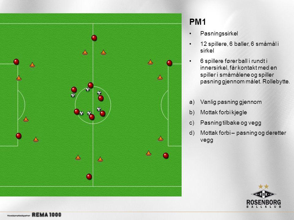 PM1 Pasningssirkel 12 spillere, 6 baller, 6 småmål i sirkel