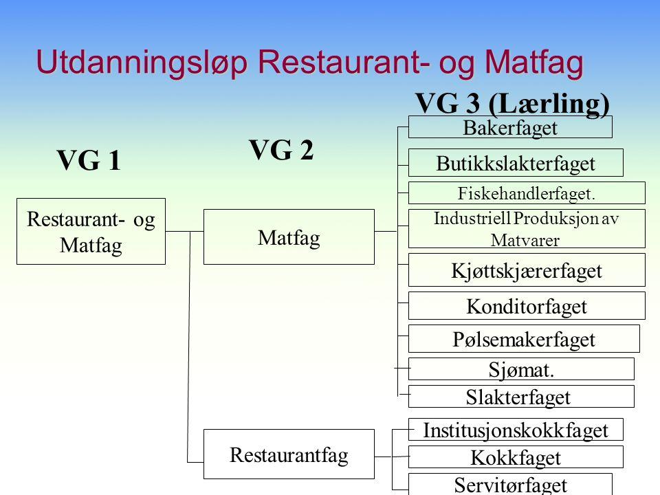 Utdanningsløp Restaurant- og Matfag