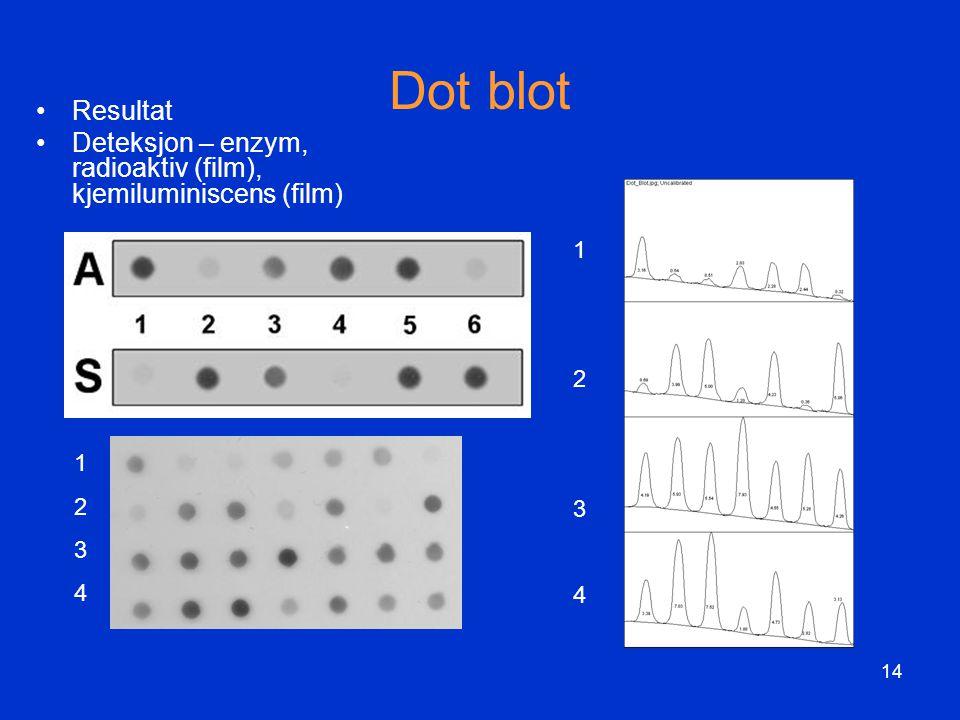 Dot blot Resultat Deteksjon – enzym, radioaktiv (film), kjemiluminiscens (film) 1 2 3 4 1 2 3 4