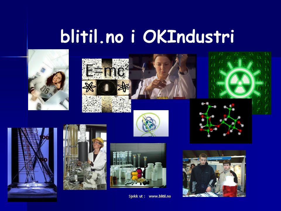blitil.no i OKIndustri Sjekk ut : www.blitil.no