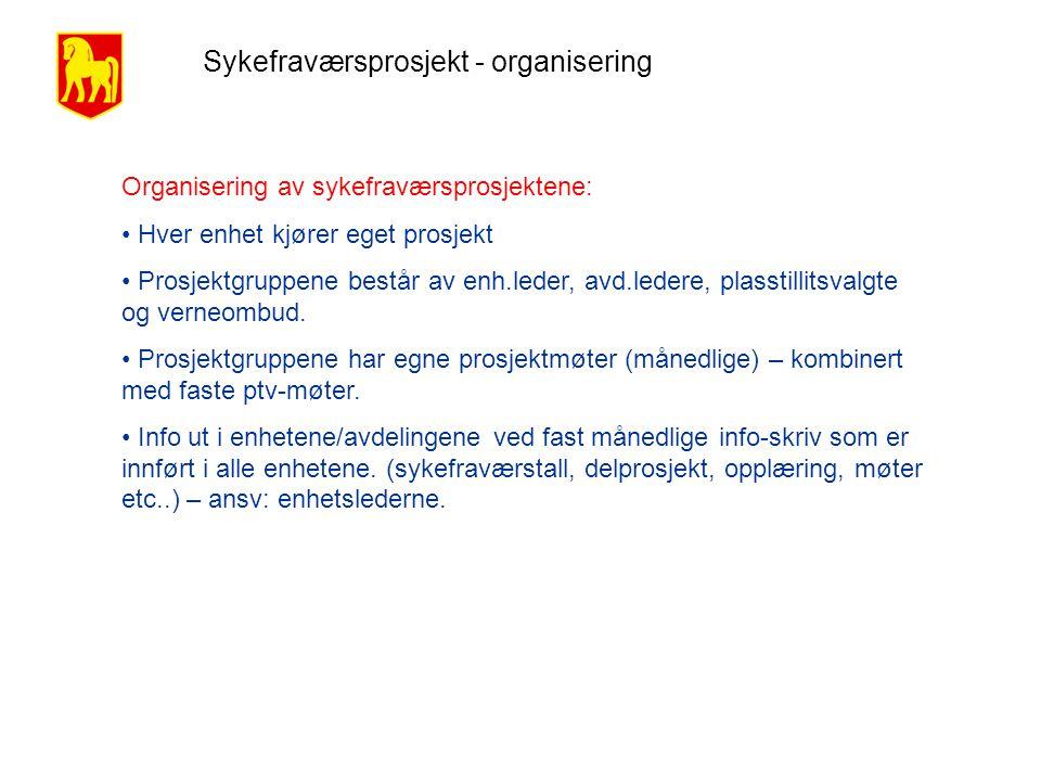 Sykefraværsprosjekt - organisering